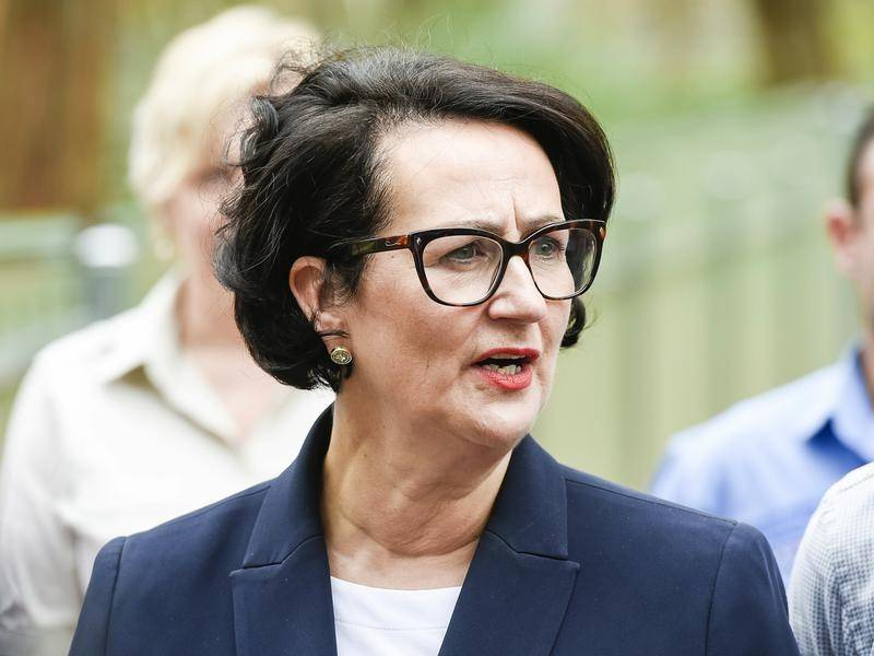 Attorney-General Vickie Chapman says new legislation will remove abortion from SA's criminal law.