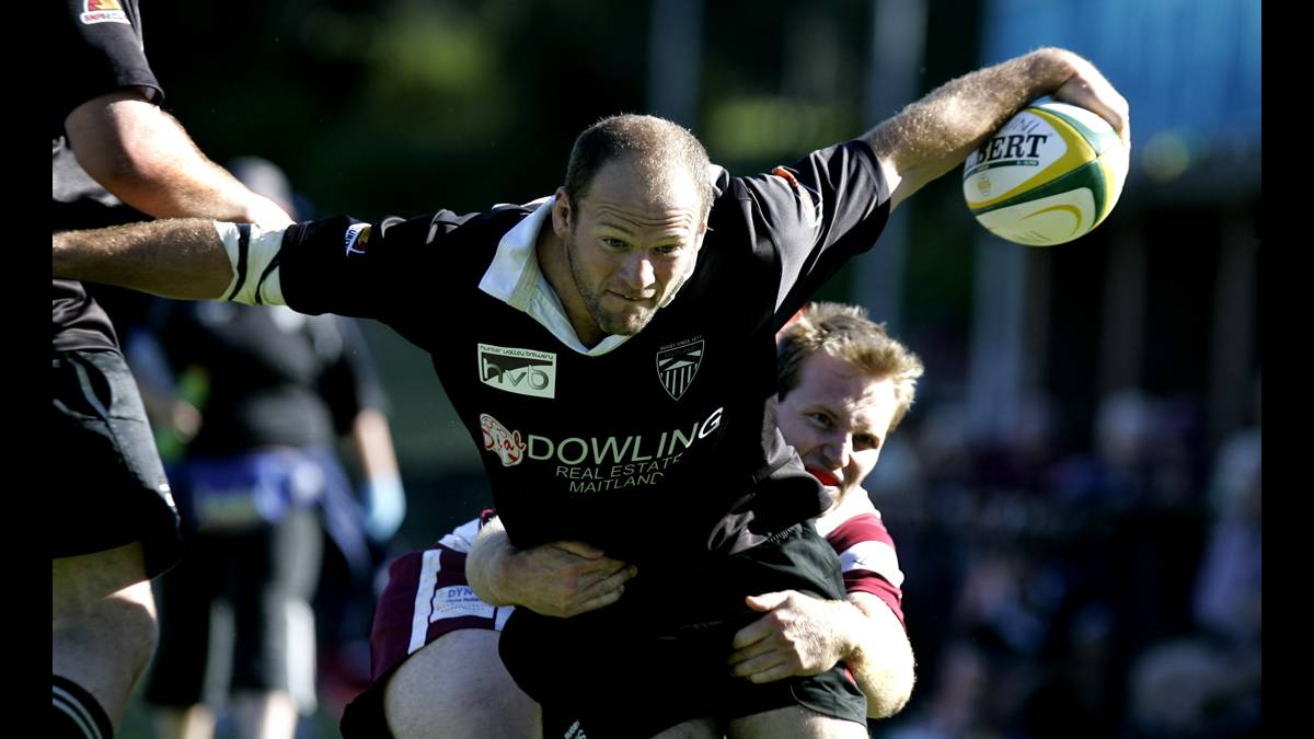 Maitland Black welcome back Adam Perkins to line-up | The ...